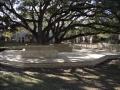 colonial-park-west-university