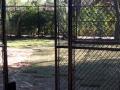 houston-zoo-cassowary-enclosure-2008
